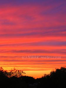 Deep Red Sunset Card